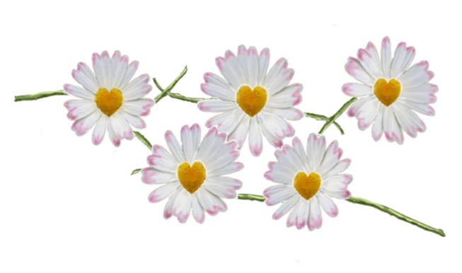 Daisy Chain Graphic