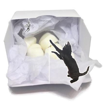 Little Black Cat 2 Boxed Wax Malts